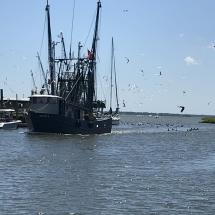 Shrimp Boat Shem Creek